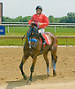 Risk On winning at Delaware Park on 6/120/12