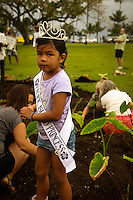 Planting and growing Taro locally in Hawaii