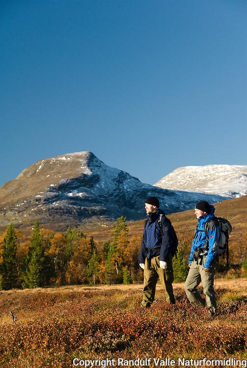 Menn går til fots i høstlandskap på svensk side i Sylane. ---- Men hiking in montain landscape.