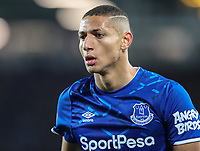 23rd  November 2019; Goodison Park , Liverpool, Merseyside, England; English Premier League Football, Everton versus Norwich City; Richarlison of Everton   - Strictly Editorial Use Only. No use with unauthorized audio, video, data, fixture lists, club/league logos or 'live' services. Online in-match use limited to 120 images, no video emulation. No use in betting, games or single club/league/player publications