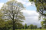 Killarney Golf Club.<br /> Picture by Don MACMONAGLE
