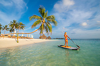 Maldives, Rangali Island. Conrad Hilton Resort. Woman on a paddleboard on the ocean, near a palm tree. (MR)
