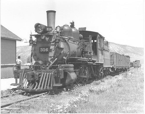 3/4 fireman's-side view of D&amp;RGW #316 with a freight at Ridgway depot.<br /> D&amp;RGW  Ridgway, CO  Taken by Treptow, Russell F. - 6/5/1942