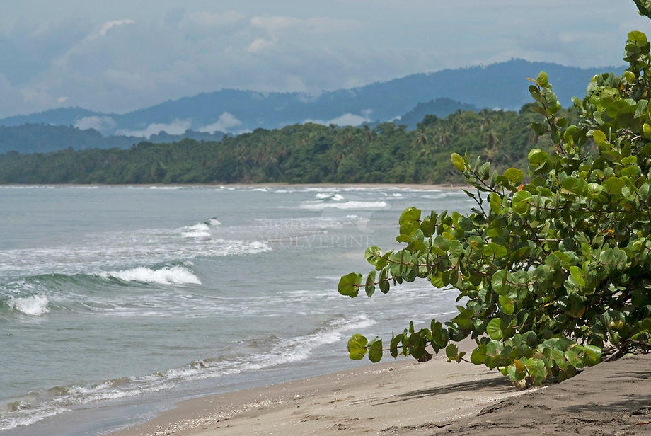 Caribean coastline, Cahuita - Costa Rica