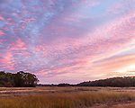 The Newbury Saltmarsh in Newbury, Massachusetts, USA