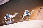 Chad (Tchad), North Africa, Sahara, Ennedi, young Chad men riding camel across water