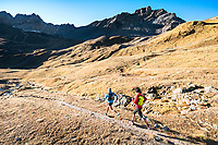Trail running above Val Funtauna between Berguns and Davos, Switzerland with golden fall colors