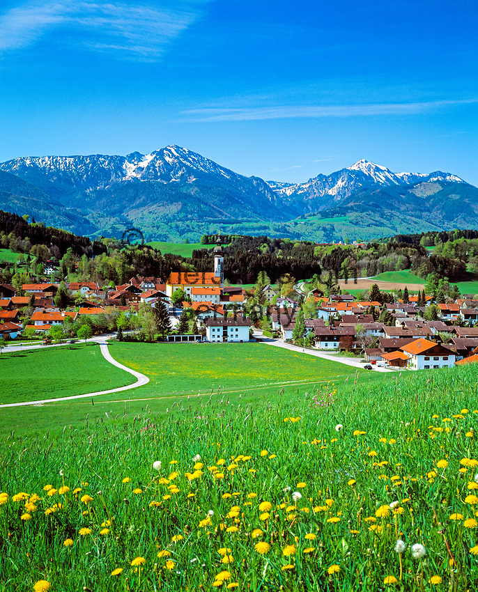 Deutschland, Bayern, Oberbayern, Chiemgau: Vachendorf mit Hochgern und Hochfelln | Germany, Bavaria, Upper Bavaria, Chiemgau: Vachendorf with Hochgern and Hochfelln mountains