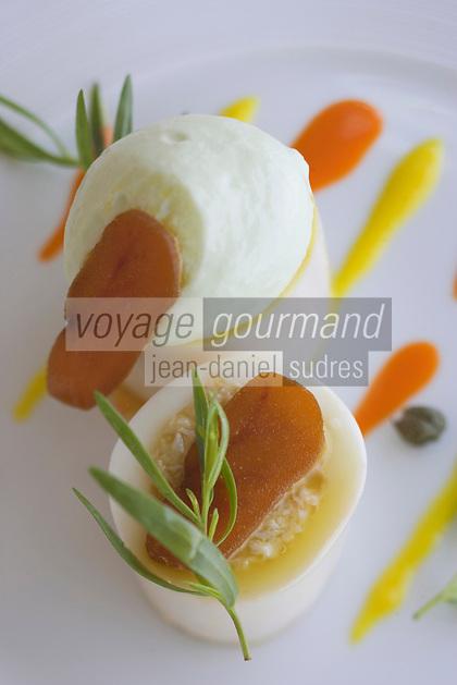 """Europe/France/2A/Corse-du-Sud/Porto-Vecchio: Hotel-Restaurant """"Casadelmar"""" route de Palombaggia Davide Bisetto prépare son Calmar farci moutarde de poivron et pressé de légumes"""
