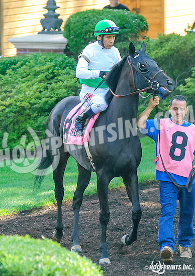 It's the Truth before The Christiana Stakes at Delaware Park on 7/6/16