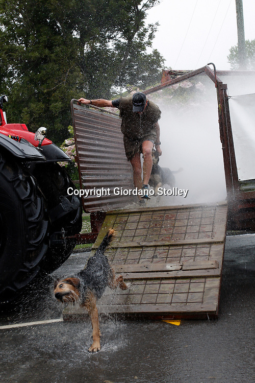 Hunterville, New Zealand - October 27, 2018 - Shepherds and their dogs had to run through a mobile sheep dip (spraying water and not chemicals) during the annual Shemozzle obstacle race. Apart from this, the race sees the canines and shepherds tackkle mudslides, ride in wheel barrows and carry bulls testicles. The annual Shemozzle race draws thousands every year to this town of less than 500 people. Picture: Giordano Stolley
