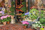 Rouvalis Flowers on Beacon Hill, Boston, Massachusetts, USA