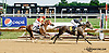 Throughleaf winning at Delaware Park on 7/19/14