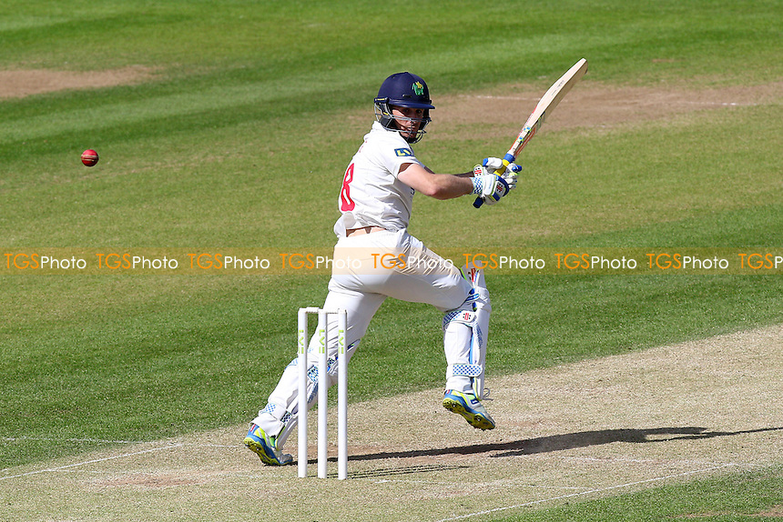 Mark Wallace in batting action for Glamorgan - Glamorgan CCC vs Essex CCC - LV County Championship Division Two Cricket at the SWALEC Stadium, Sophia Gardens, Cardiff, Wales - 20/05/15 - MANDATORY CREDIT: TGSPHOTO - Self billing applies where appropriate - contact@tgsphoto.co.uk - NO UNPAID USE