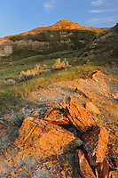 Red Deer badlands at sunset<br /> Jenner<br /> Alberta<br /> Canada