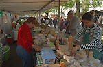 Assorted cheeses on market stall in the Bastille area of Paris. France.