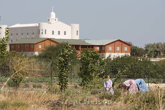 Eldorado - Tour of YFZ Ranch Thursday, June 26, 2008. working the fields with flds temple in background