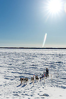 Paige Drobny runs up the Yukon River bank into at the Galena checkpoint on Saturday March 12th during the 2016 Iditarod.  Alaska    <br /> <br /> Photo by Jeff Schultz (C) 2016  ALL RIGHTS RESERVED