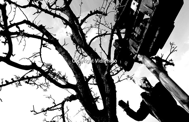 Foto: VidiPhoto..LENT - In Lent bij Nijmegen wordt dinsdag de laatste hand gelegd aan het verplaatsen van een complete hoogstamboomgaard. Zo'n honderd appel-, peren-, en pruimen van de Historische Tuinderij moesten verhuizen vanwege de aanleg van een weg in het Nijmeegse nieuwbouwproject Waalsprong. Vanwege de hoge cultuur-historische waarden werden de bomen niet gekapt. Verplaatsen van een paar hoogstamfruitbomen tegelijk gebeurt al zelden, maar het verhuizen van een complete bongerd is helemaal uniek. Omdat de meeste takken al uitlopen is lang niet zeker dat alle bomen de verplaatsing overleven.
