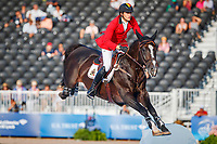 BEL-Nicola Philippaerts rides H&M Chilli Willi during the Second Competition - Round 1. FEI World Team and Individual Jumping Championship. 2018 FEI World Equestrian Games Tryon. Thursday 20 September. Copyright Photo: Libby Law Photography
