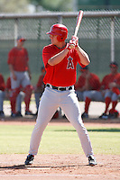 Dillon Baird - Los Angeles Angels, 2009 Instructional League.Photo by:  Bill Mitchell/Four Seam Images..
