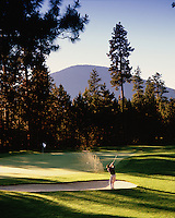 Overview of golfer hitting out of a sand bunker on the 15th hole on the Glaze Meadow Course. Black Butte Ranch, Oregon.