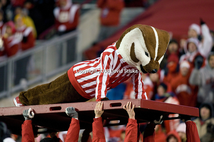 MADISON, WI - NOVEMBER 22: Mascot Bucky Badger of the Wisconsin Badgers does pushups during the game against the Cal Poly Mustangs at Camp Randall Stadium on November 22, 2008 in Madison, Wisconsin. Wisconsin beat Cal Poly 36-35 in overtime. (Photo by David Stluka)