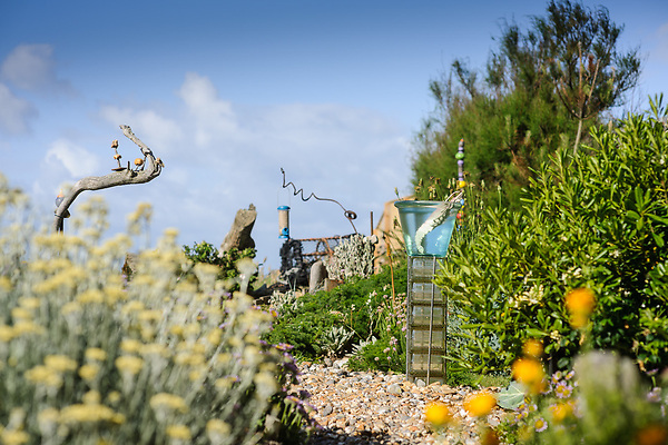 Solent Cottage Garden, Selsey, Chichester, Sussex. PO20 9DF - Liz Shackleton & David Bradley (9th June 2012)