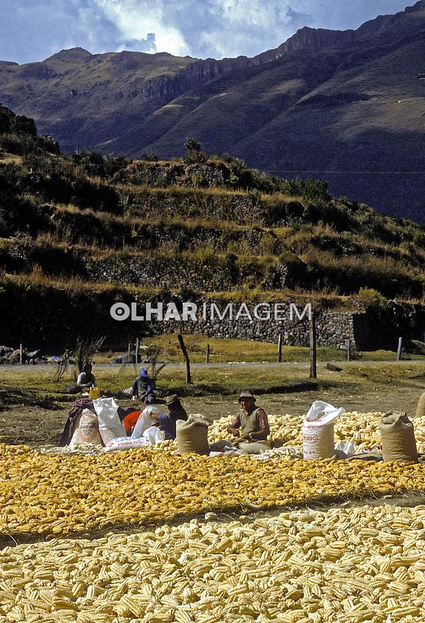Agricultura no Vale Sagrado dos Incas. Cordilheira dos Andes. Peru. 1994. Foto de Juca Martins.