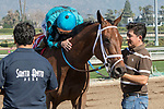 ARCADIA, CA  FEBRUARY 3 :  #1 Roy H, ridden by Kent Desormeaux,  gets a hug after winning the Palos Verdes Stakes (Grade ll) on February 3, 2018, at Santa Anita Park in Arcadia, CA.(Photo by Casey Phillips/ Eclipse Sportswire/ Getty Images)