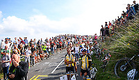 Picture by Alex Whitehead/SWpix.com - 13/09/2014 - Cycling - 2014 Friends Life Tour of Britain - Stage 7, Camberley to Brighton - Spectators on Ditchling Beacon during Stage 7.