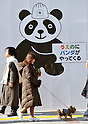 February 22, 2011, Tokyo, Japan - Souvenir shops, boutiques, restaurants and street signs, pandas are everywhere in Ueno, the new home of two giant pandas, in downtown Tokyo on Tuesday, February 22, 2011. The two five-year-old pair - female Xiannu and male Bili - arrived at Ueno Zoo late Monday night after a 30-hour journey from the panda preserve in southwestern China's Sichuan province. The zoo and the neighborhood community have worked for weeks to provide VIP-class hospitality, hoping the pair - the zoo's first since the 2008 death of its beloved giant panda Ling Ling - will give the nation's economy a boost. (Photo by Natsuki Sakai/AFLO) [3615] -mis-