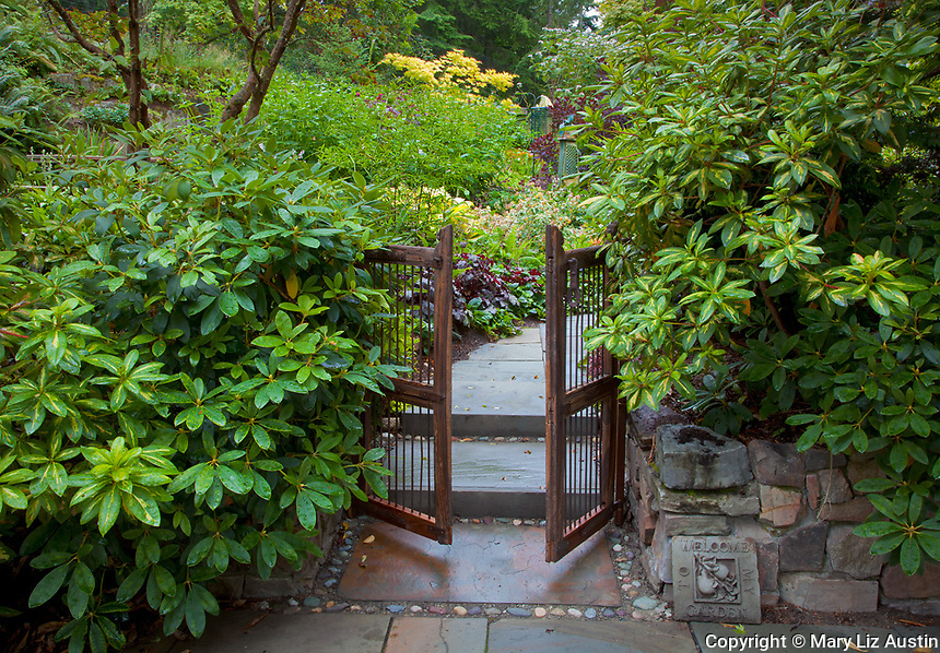 Vashon-Maury Island, WA<br /> Lush rhododendrons and wooden gate beckon visitors into a secluded garden