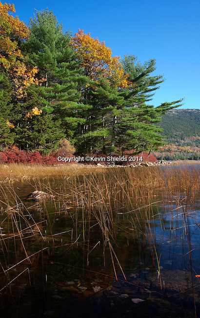 Fall view of Eagle Lake, Acadia National Park, Maine, USA