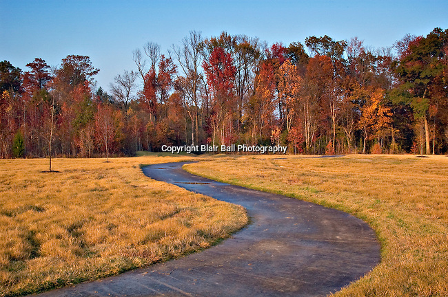 Park near Mike Rose soccer field in Memphis taken in the fall.