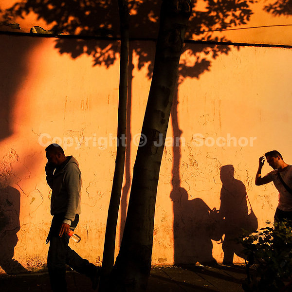 The Buena Vista neighbourhood residents walk along a tree during the sunset in Mexico City, Mexico, 15 November 2018.