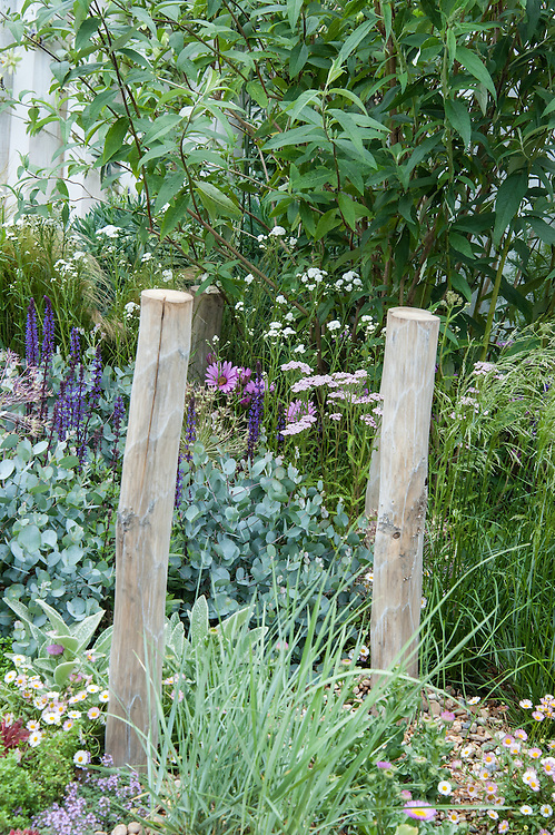 """Coastal Drift"" show garden, designed by Susan Willmott and Adele Ford, Hampton Court Flower Show 2012."
