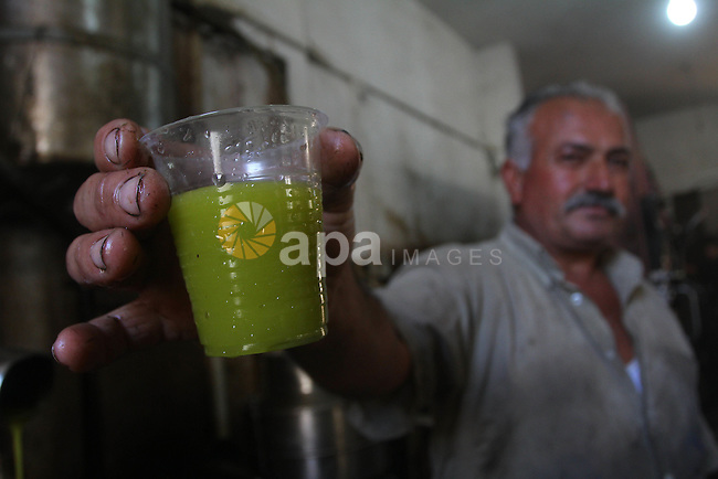 Palestinians producing olive oil in the olive oil factory in Gaza city on Nov. 13,2011 during the olive harvesting season. Agriculture is a major sector of the Palestinian economy, employing a large part Palestinians. Agriculture also contributes to a large part of foreign currency earnings. Photo by Ashraf Amra