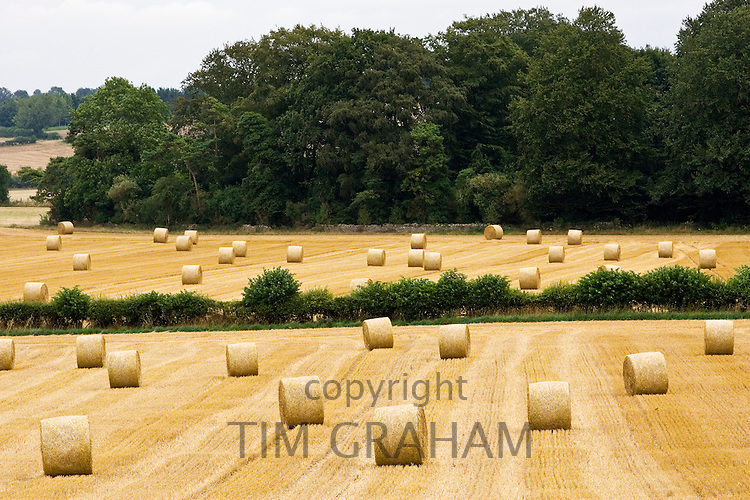 Straw bales in the Cotswolds at Swinbrook in Oxfordshire, United Kingdom