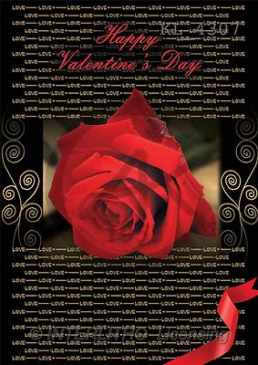 Interlitho, Daniela, FLOWERS, portrait, macro, photos, red rose, ornaments, KL, KL4307,#F# Blumen, flores, retrato