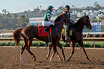"""DEL MAR, CA  AUGUST 24: #7 Catalina Cruiser, ridden by Flavien Prat, in the post parade before the Pat O'Brien Stakes (Grade ll) """"Win and You're In Breeders' Cup Dirt Mile Division"""" on August 23, 2019 at Del Mar Thoroughbred Club in Del Mar, CA.  ( Photo by Casey Phillips/Eclipse Sportswire/CSM)"""