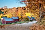 Autumn sunrise on the Jenne Farm in Reading, VT, USA