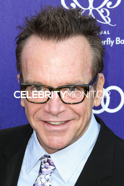 BRENTWOOD, LOS ANGELES, CA, USA - JUNE 07: Tom Arnold at the 13th Annual Chrysalis Butterfly Ball held at Brentwood County Estates on June 7, 2014 in Brentwood, Los Angeles, California, United States. (Photo by Xavier Collin/Celebrity Monitor)