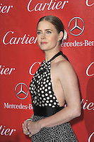 Amy Adams at the 2014 Palm Springs International Film Festival Awards gala at the Palm Springs Convention Centre.<br /> January 4, 2014  Palm Springs, CA<br /> Picture: Paul Smith / Featureflash