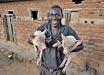 McDonald Ndhlovu with two of his pigs in Zombwe, in northern Malawi.