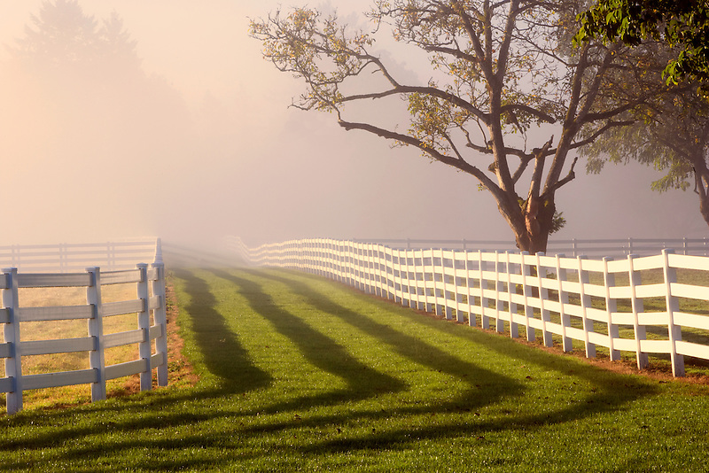 Fenced pasture with fog and sunrise. Near Wilsonville. Oregon