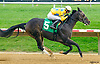 Lake Creek the winningest horse of the 2016 meet winning again at Delaware Park on 10/13/16