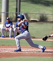Brandon Montgomery - 2017 AIL Dodgers (Bill Mitchell)