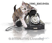 Marcello, REALISTIC ANIMALS, REALISTISCHE TIERE, ANIMALES REALISTICOS, paintings+++++,ITMCEDC1042A,#A# ,cats ,kittens