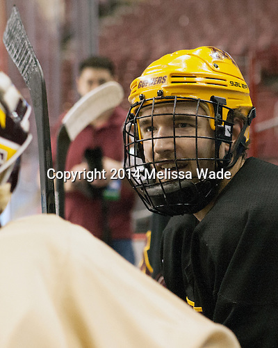 Seth Ambroz (MN - 17) - The University of Minnesota Golden Gophers took part in a press conference and practice on Friday, April 11, 2014, during the 2014 Frozen Four at the Wells Fargo Center in Philadelphia, Pennsylvania.